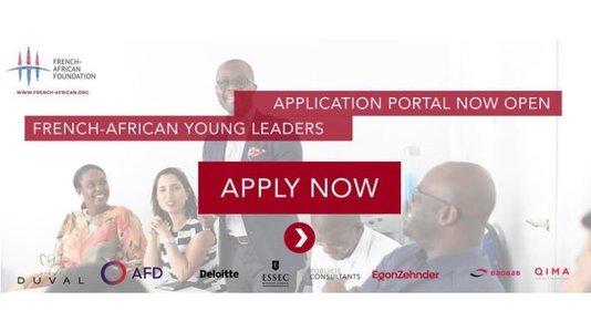 French-African Young Leaders program: call for applications